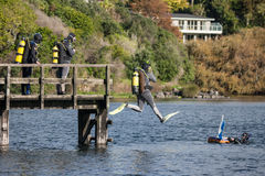Divers jumping off wooden jetty on lake Pupuke Royalty Free Stock Image