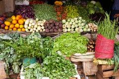 Divers légumes dans le système végétal, Sri Lanka Images stock