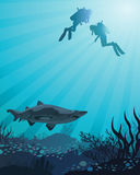 Divers looking to the shark. Two divers looking to the big shark and coral reef on a blue sea background Stock Photo