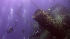 Divers near wreck ship underwater on coral reef Abu Nuhas in Red sea. Swimming in world of colorful beautiful wildlife of reefs and algae. Inhabitants in stock video footage