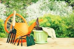 Divers outils de jardinage dans le jardin Photos libres de droits