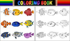 Divers poissons de livre de coloriage Photo stock
