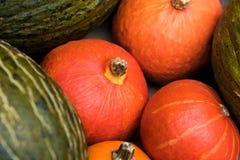 Divers potirons mûrs montrés pendant le marché d'agriculteurs Bio potirons frais de épicerie Photos libres de droits