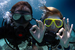 Divers stock image