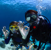 Divers royalty free stock photo