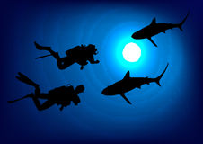 Divers and sharks in the depths. Vector. Stock Photo