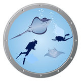 Divers and stingrays Royalty Free Stock Photography