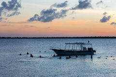 Divers at sunset. In Bonaire Royalty Free Stock Photography
