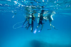 Divers at the surface Royalty Free Stock Photos