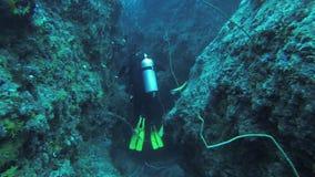 Divers swim underwater with aqualungs between reefs. Sealife. Deepness. Bubbles. Active hobby stock video