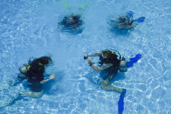 Divers in a swimming pool. Stock Images
