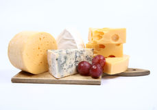 Divers types de fromage Photographie stock libre de droits