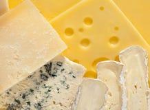 Divers types de fromage Image libre de droits