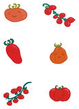 Divers types de tomates Photographie stock