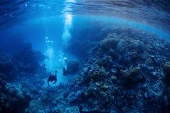 Divers underwater stock image