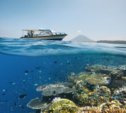 Divers views coral reef with many fish near Bunaken island, Indo Stock Photo