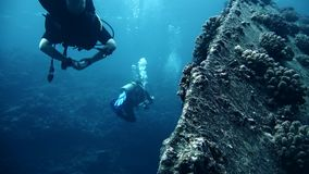 Divers visiting the wreck Giannis D, Red Sea, Sharm el Sheikh, Egypt. Sinai stock video footage