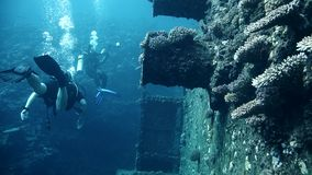 Divers visiting the wreck Giannis D, Red Sea, Sharm el Sheikh, Egypt stock video