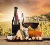 Diversa clase de queso con el vino Foto de archivo libre de regalías