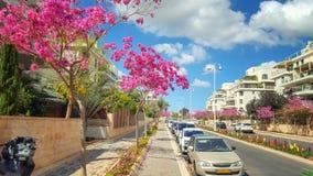 Diversa escala de colores en la calle israelí foto de archivo libre de regalías