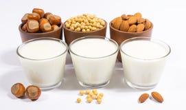 Diversa leche del vegano - bebida del vegano Imágenes de archivo libres de regalías