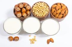 Diversa leche del vegano - bebida del vegano Fotos de archivo libres de regalías