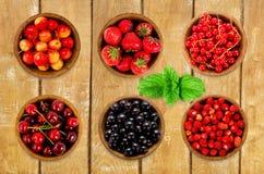 Diversas bayas determinadas Fresas, pasa, cereza Imagen de archivo libre de regalías