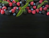 Diversas bayas frescas del verano aisladas en fondo negro Fotografía de archivo libre de regalías