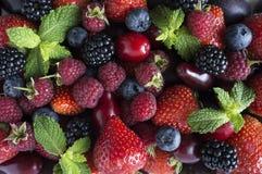 Diversas bayas y frutas frescas del verano Fresas maduras, frambuesas, zarzamora; bayas, ciruelo y bleberries rojos imágenes de archivo libres de regalías
