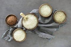 Diversas clases de arroz Foto de archivo libre de regalías