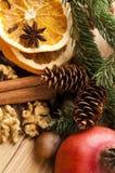 Diversas clases de especias, de tuercas y de naranjas secadas Imágenes de archivo libres de regalías