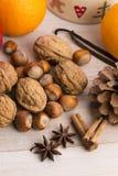 Diversas clases de especias, de tuercas y de naranjas secadas Fotos de archivo libres de regalías