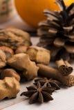 Diversas clases de especias, de tuercas y de naranjas secadas Fotografía de archivo libre de regalías