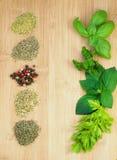 Diversas clases de especias secadas y frescas Imagen de archivo