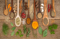 Diversas clases de especias y de hierbas con la cuchara de madera en la parte posterior de madera Imágenes de archivo libres de regalías
