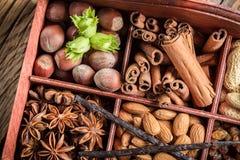 Diversas clases de ingredientes y de nueces para el chocolate Fotos de archivo libres de regalías