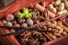 Diversas clases de ingredientes y de nueces para el chocolate Imagen de archivo libre de regalías