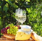 Diversas clases de queso, de pan, de uvas y de dos vidrios del wh Foto de archivo