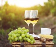Diversas clases de queso, de uvas y de dos vidrios de vino blanco Fotos de archivo libres de regalías