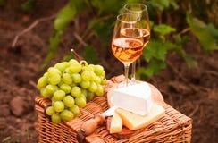 Diversas clases de queso, dos vidrios de vino blanco en el jardín Fotografía de archivo libre de regalías