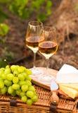 Diversas clases de queso, dos vidrios de vino blanco en el jardín Imágenes de archivo libres de regalías