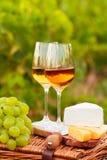 Diversas clases de queso, dos vidrios de vino blanco en el jardín Fotos de archivo