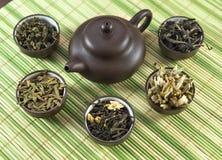 Diversas clases de té verde en pequeñas tazas Imagen de archivo libre de regalías