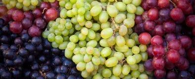 Diversas clases de uvas frescas Fotografía de archivo libre de regalías