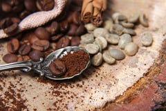 Diversas clases del primer de granos de café, café verde, dispersado en un fondo de madera, cuchara del café molido en espacio va Fotos de archivo libres de regalías