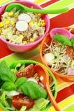 Diversas ensaladas en comida fría Fotos de archivo libres de regalías