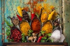 Diversas especias coloridas en la tabla de madera Imagen de archivo libre de regalías