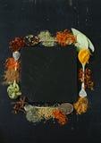 Diversas especias en un fondo negro fotografía de archivo