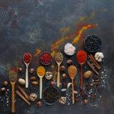Diversas especias indias en cucharas y cuencos y nueces de madera del metal en la tabla de piedra oscura Especias coloridas, visi Foto de archivo libre de regalías