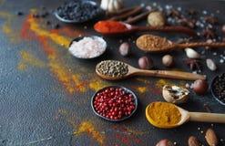 Diversas especias indias en cucharas y cuencos y nueces de madera del metal en la tabla de piedra oscura Especias coloridas, foco Imagen de archivo libre de regalías